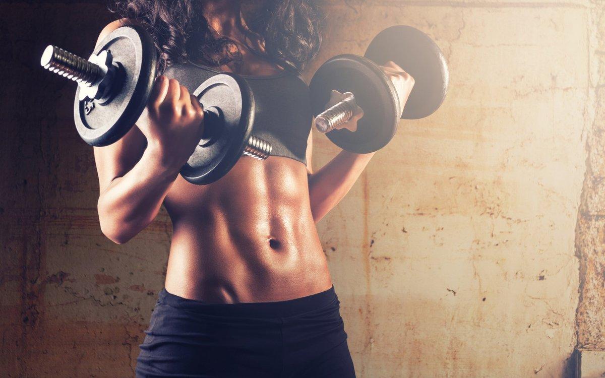Fitness Ekipmanları