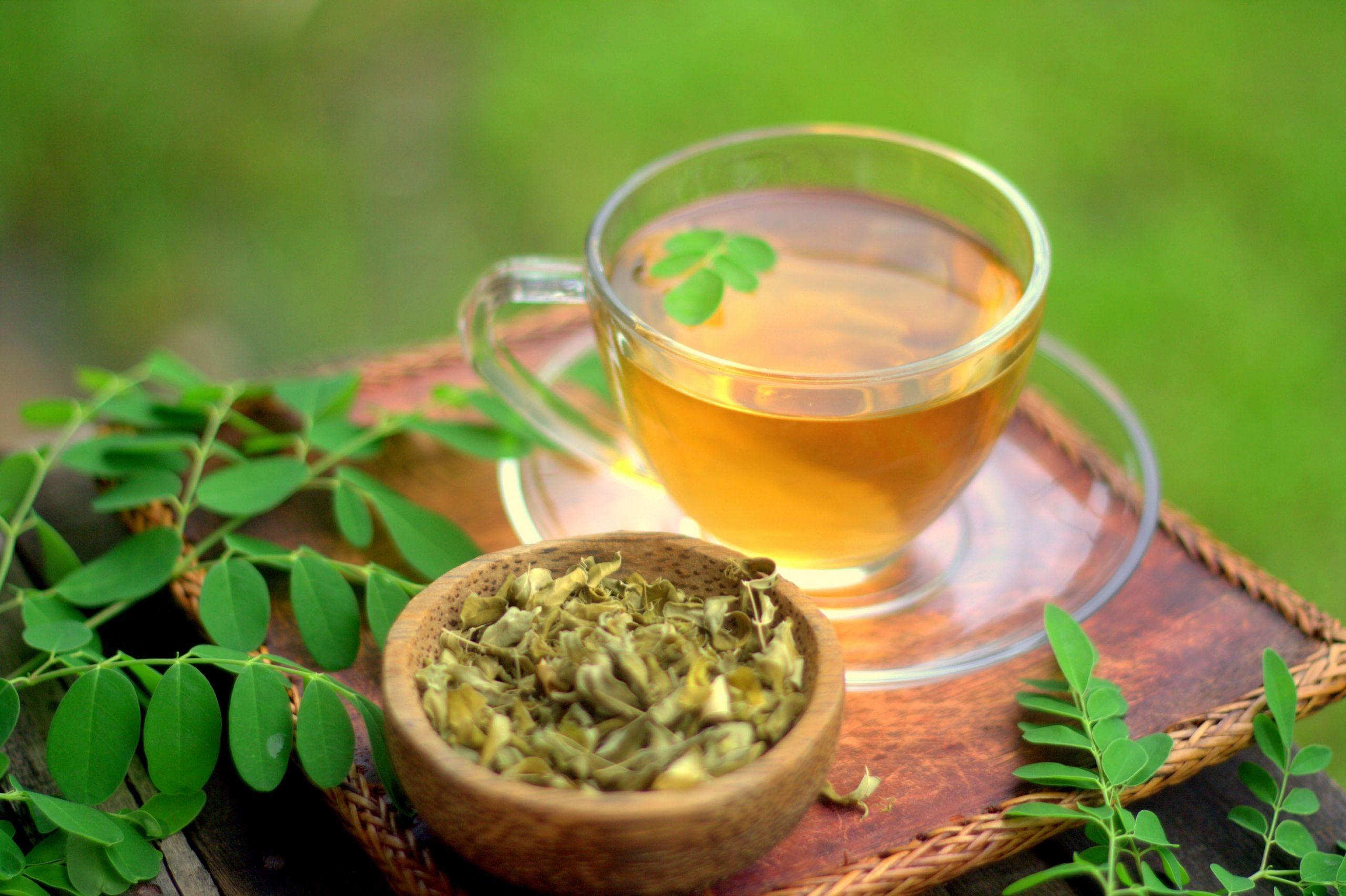 Kış Çayı Moringa