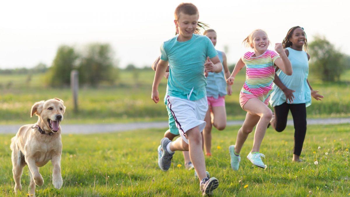 Küçük Koşucular İçin Ayakkabı Seçiminde Dikkat Edilmesi Gerekenler